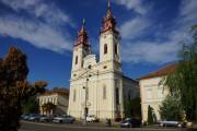 Собор Рождества Иоанна Предтечи - Арад - Арад - Румыния