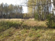 Церковь Илии Пророка - Ильинский погост - Вязниковский район - Владимирская область