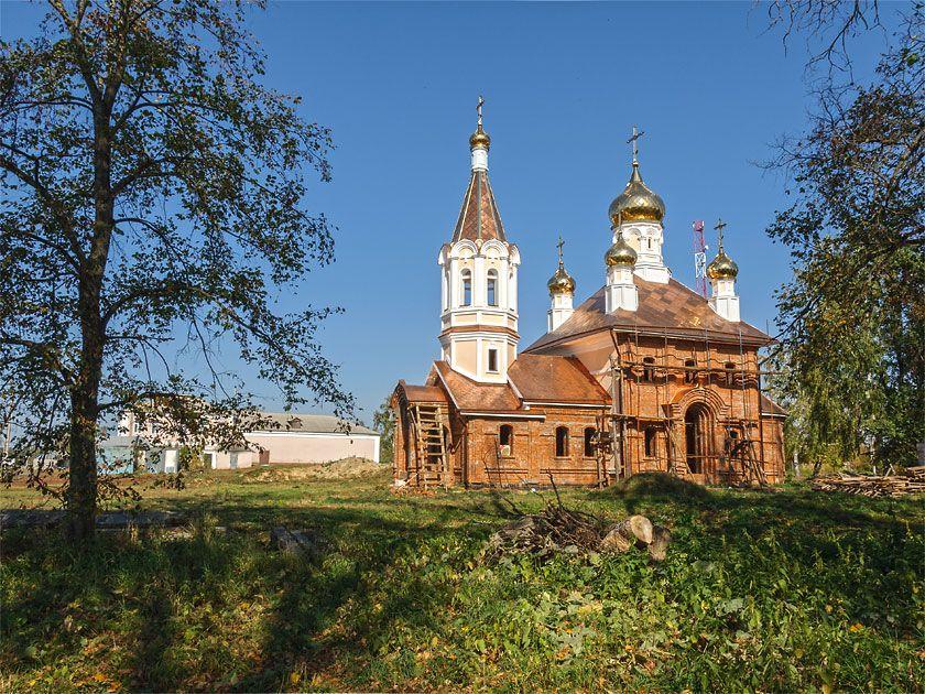 Черешня в ленинградской области фото обыкновенными