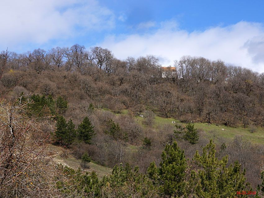 Монастырь Самеба, Самеба