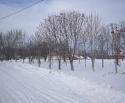 Церковь Покрова Пресвятой Богородицы - Куриловка - Усманский район - Липецкая область