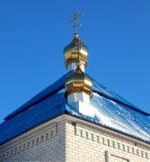 Церковь Димитрия Солунского - Рогозно - Жабинковский район - Беларусь, Брестская область