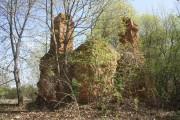 Колокольня церкви Казанской иконы Божией Матери - Рудино - Арсеньевский район - Тульская область