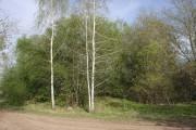 Церковь Благовещения Пресвятой Богородицы - Полуэктово - Арсеньевский район - Тульская область