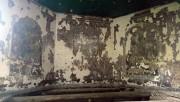 Церковь Космы и Дамиана - Николаевка - Моршанский район и г. Моршанск - Тамбовская область