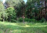 Церковь Спаса Преображения - Оснополье - Устюженский район - Вологодская область